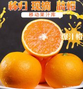秭归脐橙当季水果现摘现发